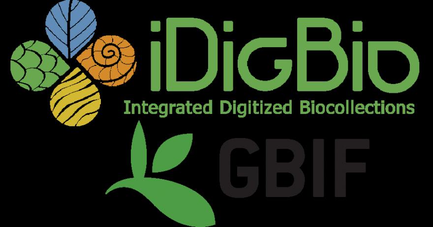 iDigBio logo alongside GBIF logo
