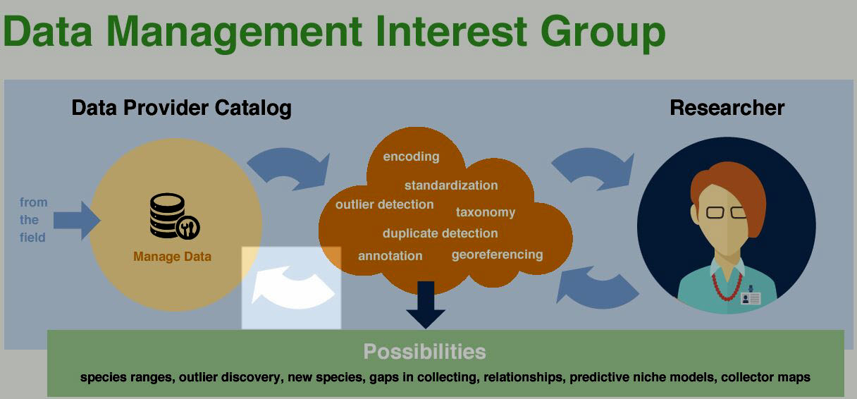 poster for the Data Management Interest Group at iDigBio