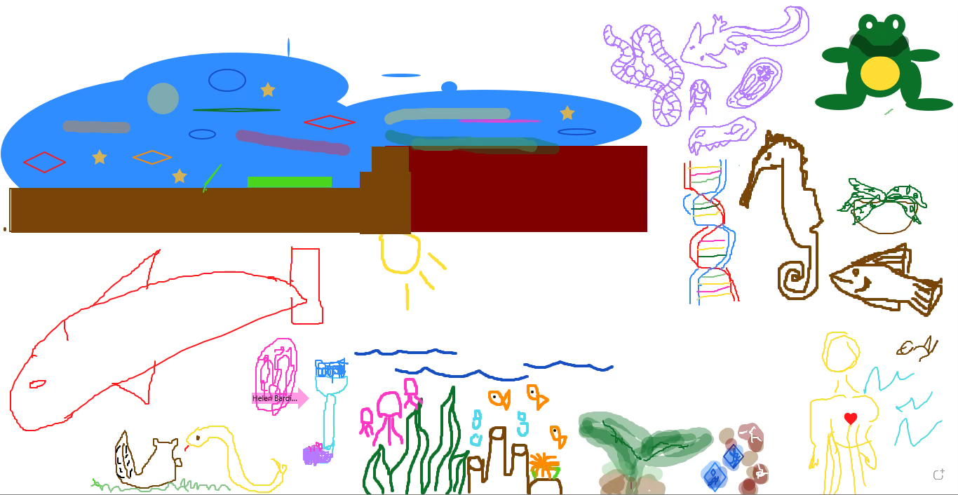 Screenshot from a Zoom whiteboard showing a variety of plants and animals participants drew to represent their interests in biology.