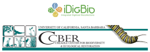 File:IDigBio and CCBER logo.PNG